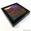 Superbloom box frame print
